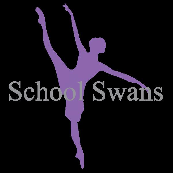 School Swans